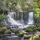 Horseshoe Falls - Southern Tasmania - Australia by TonyCrehan