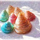 Seashells - Impressions by Susie Peek