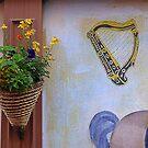 The Harp...............................Ireland by Fara