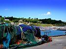 Harbour Life in Lyme Regis by Charmiene Maxwell-Batten