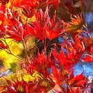 Autumn Leaves - Mount Wilson - The HDR Experience by Philip Johnson