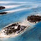 Bora Bora Aerial by Michelle Dry