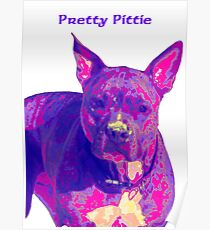 Pit Bull - Phoebe Poster