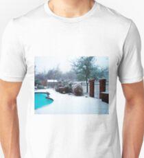 Winter in Texas Unisex T-Shirt