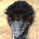 Emu by Coralie Plozza