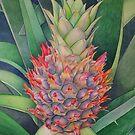Ornamental Pineapple by joeyartist