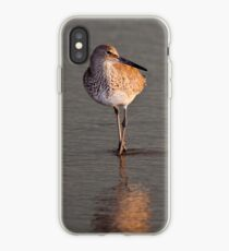 Willet at Sunset iPhone Case