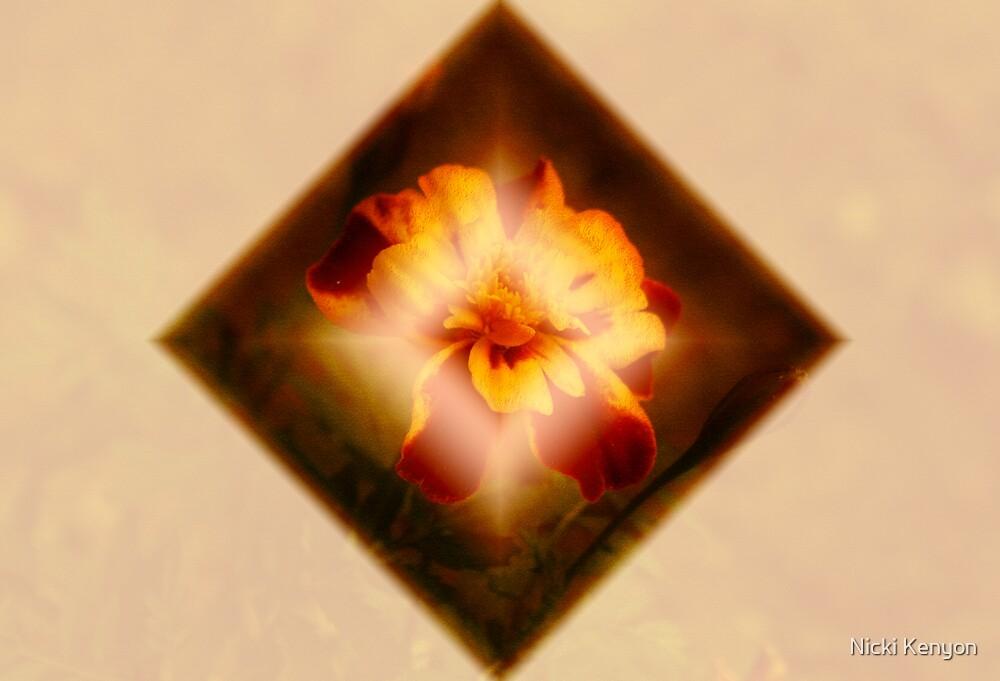 Flower by Nicki Kenyon
