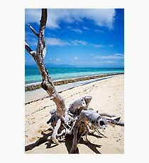 Beach landscape Photographic Print