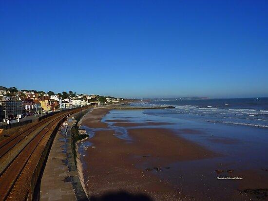 Coastal Railway, Dawlish by Charmiene Maxwell-Batten