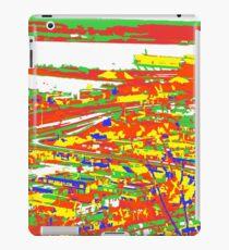 Duluth, Colorized. iPad Case/Skin