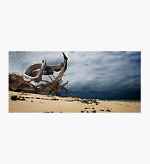 Stormy beach Photographic Print