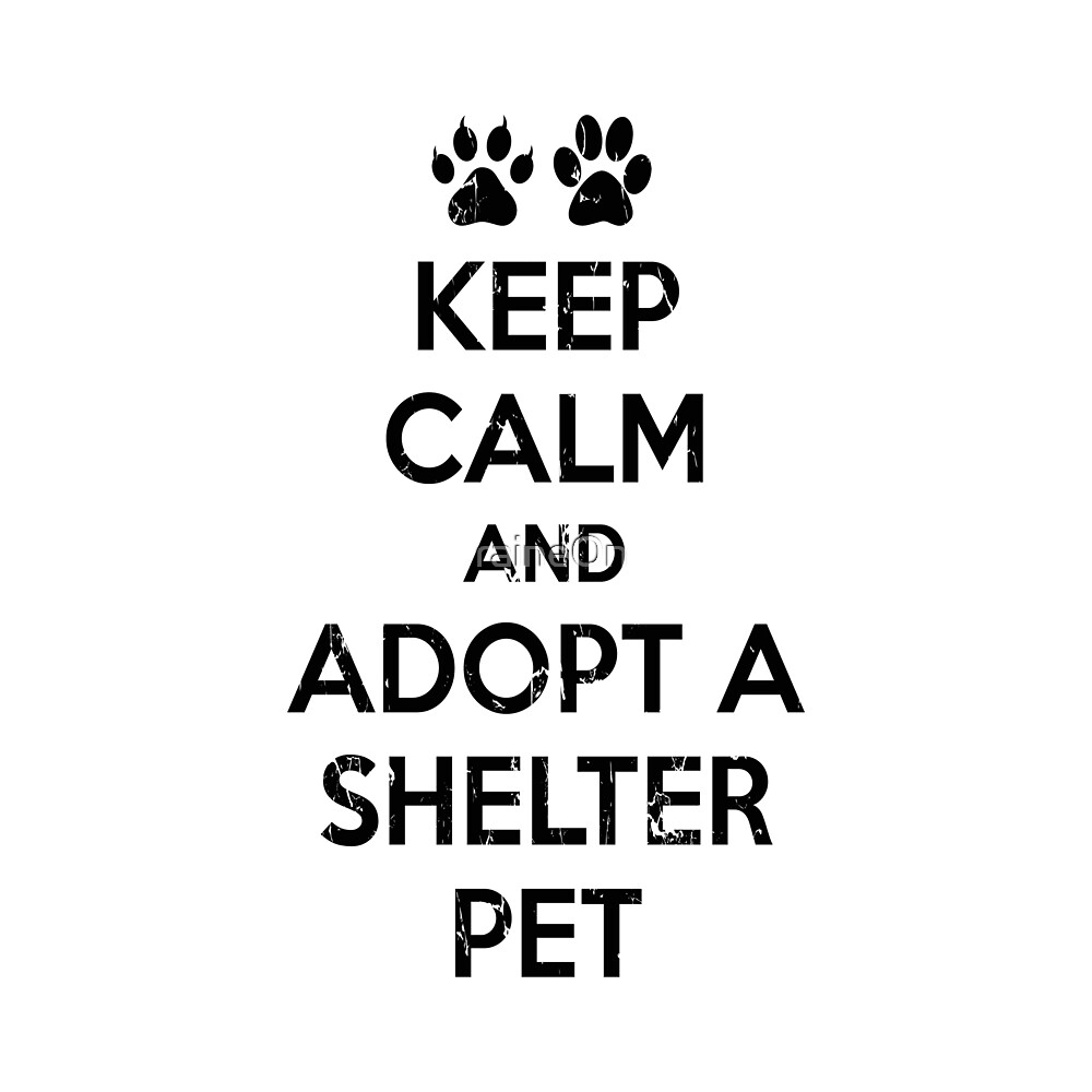 KEEP CALM AND ADOPT A SHELTER PET by raineOn