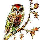 Brown Owl by Linda Callaghan