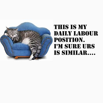 Kitty - This is my Daily Labour Position.... How about you? by etechaustralia