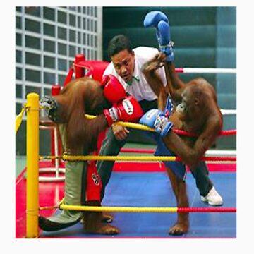Monkey Fights by etechaustralia