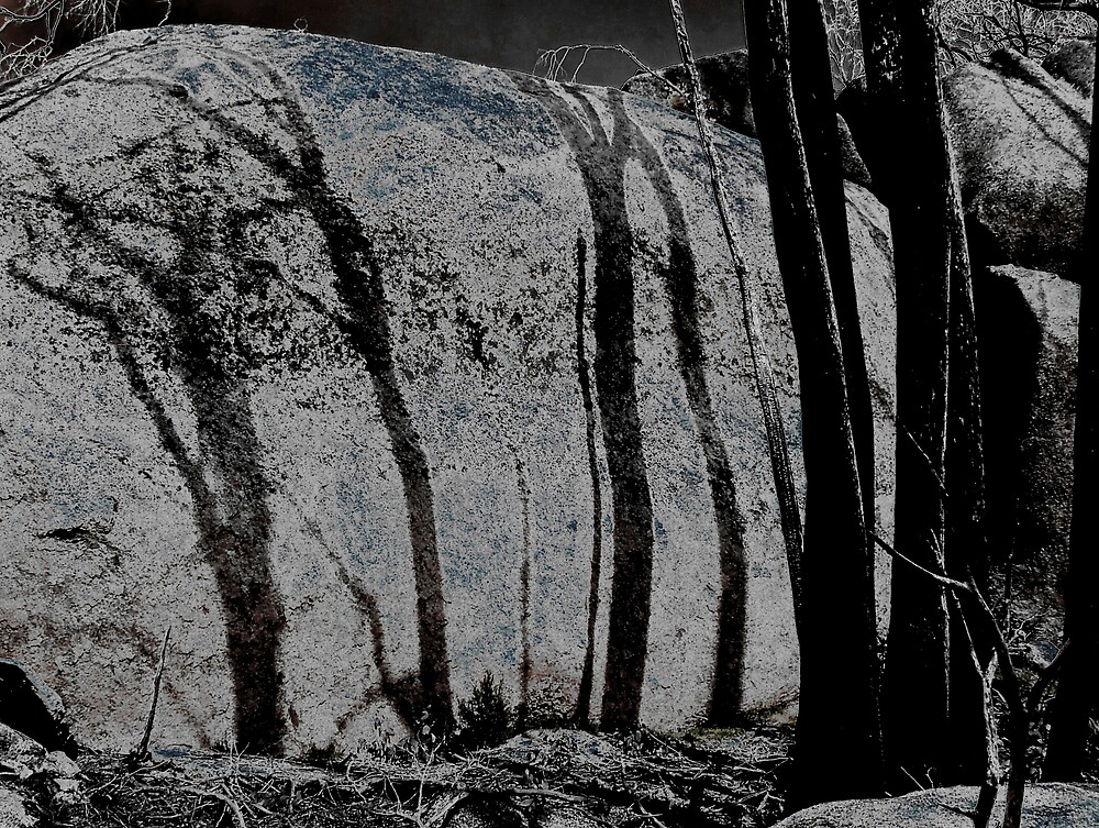 Burnt Shadows by Owen Kaluza