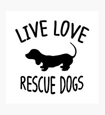 LIVE LOVE RESCUE DOGS Photographic Print