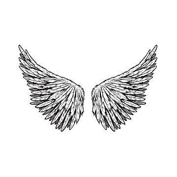 angel wings  by Nayla475