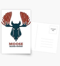 Alaskan Moose - Alces Gigas Postcards