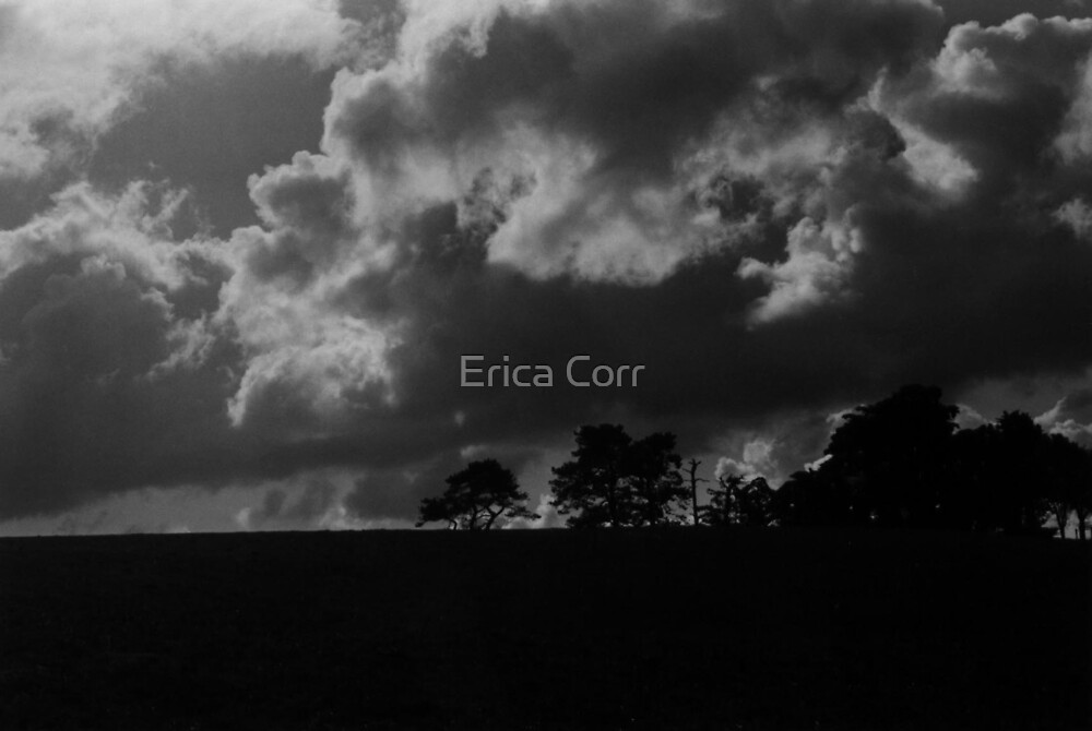 Clouds in Contrast by Erica Corr