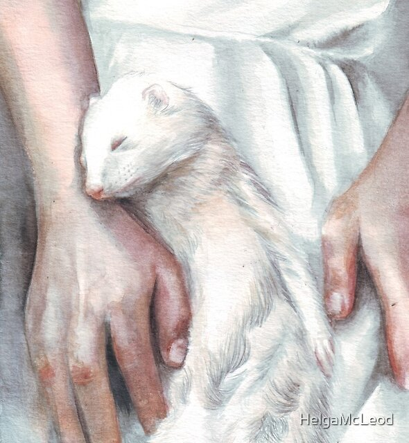A Ferret Moment by HelgaMcLeod
