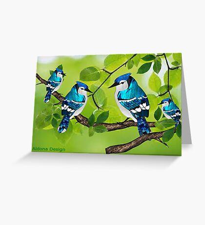 Blue jays (3682 views) Greeting Card