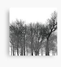 Abstract tree pattern in black Canvas Print
