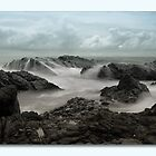 Rocky Forster  66881 by kevin chippindall