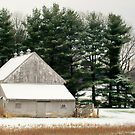 A Snowy Day in The Country by Grinch/R. Pross