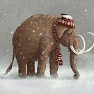 The Ice Age Sucked by Terry  Fan