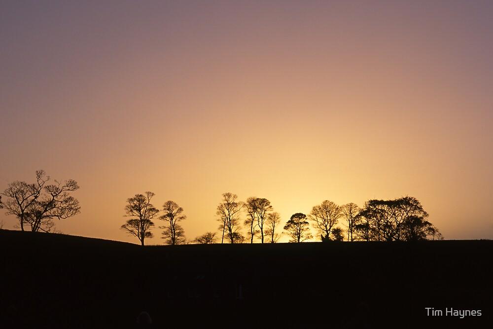 Cramond Sunset by Tim Haynes