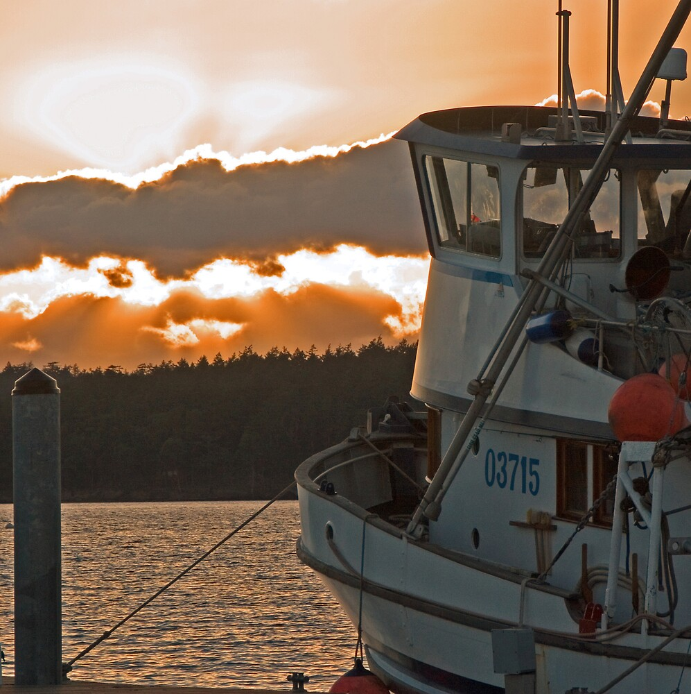 Friday Harbour Sunset by fishinfool