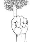 Tree... by Ercan BAYSAL