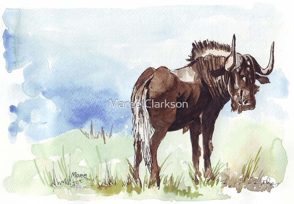 Black Wildebeest (Connochaetes gnou) by Maree Clarkson