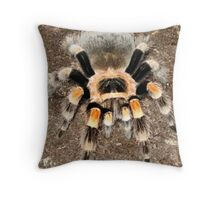 Mexican Red Knee Throw Pillow