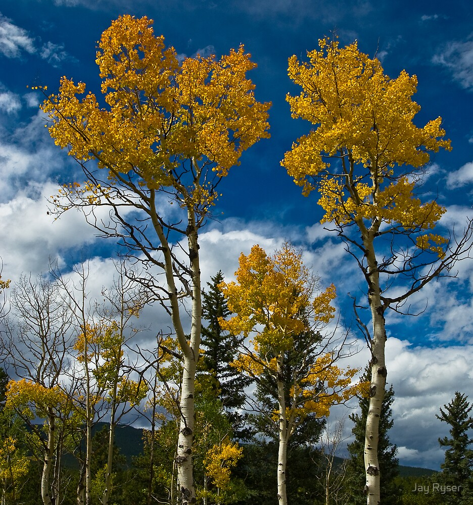 Fall with Blue Skies by Jay Ryser
