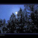Waxing Solstice Moon by Greg German