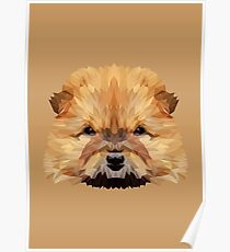 Chow chow low poly. Poster