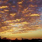Golden Sunset by chardy