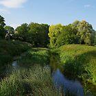 Ryebridge, Wiltshire by lezvee