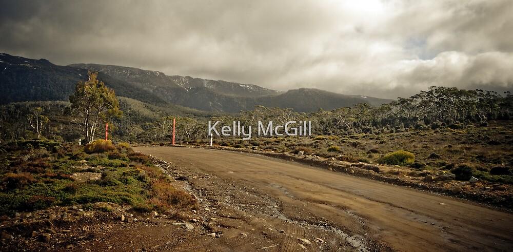 Wombat Moor, Mt Field National Park by Kelly McGill