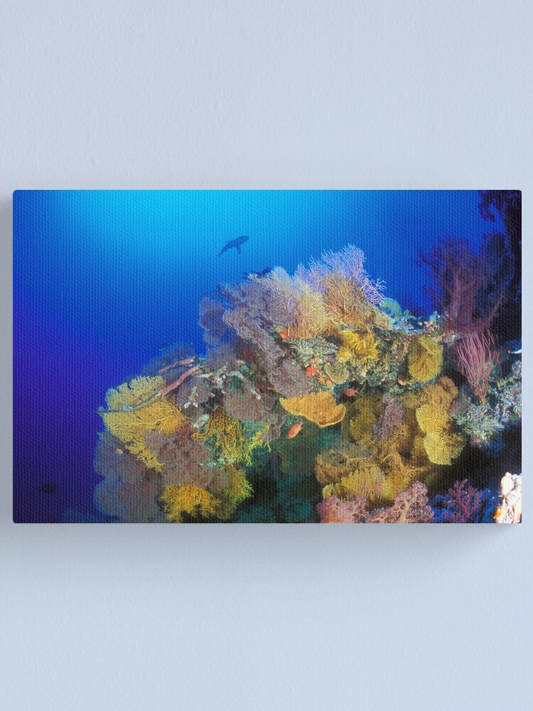 Alternate view of Osprey Reef silhouette Canvas Print