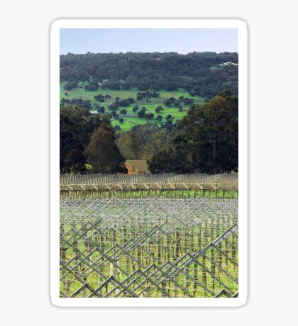 Swan Valley Winery Sticker