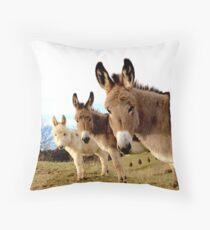Donkey Trio Throw Pillow