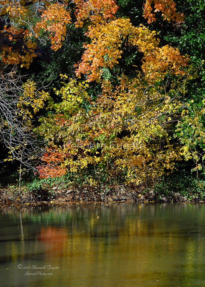 Fall Colors by Kenneth Fugate