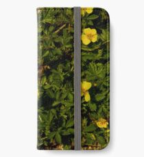 Tormentil in Shalwy Valley iPhone Wallet/Case/Skin