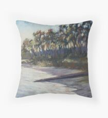 Late afternoon glow on Smiths Lake Throw Pillow