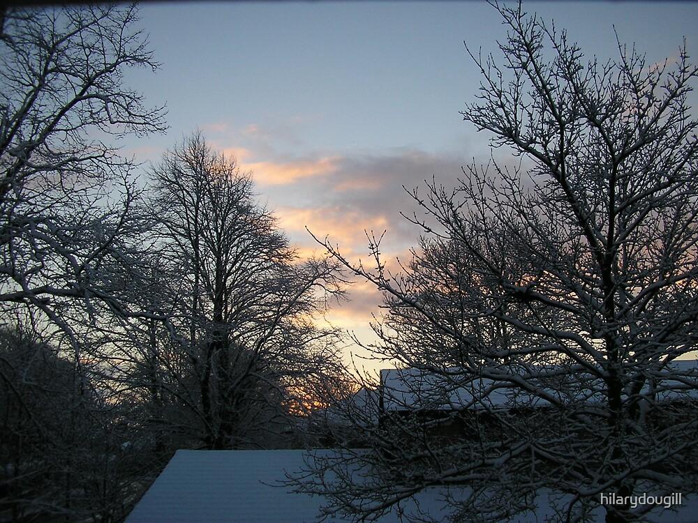 snowy sky by hilarydougill