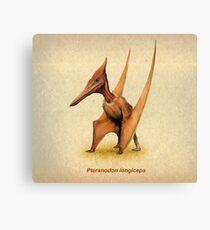 Pteranodon Canvas Print